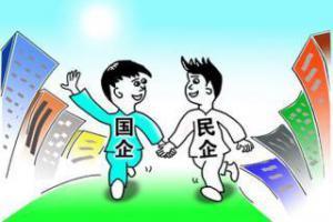 """国家电网""""混改""""攻坚:已引入民营资本36家"""