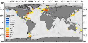 沿海海水吸收了更多的二氧化碳