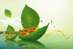 中再融立足绿色金融 为再生资源产业升级拓展新思路