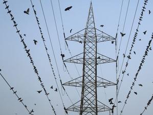 保加利亚和马其顿将加入电力市场