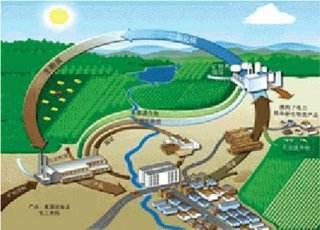 到2022年,阳信县取暖基本不用煤!用生物质能!