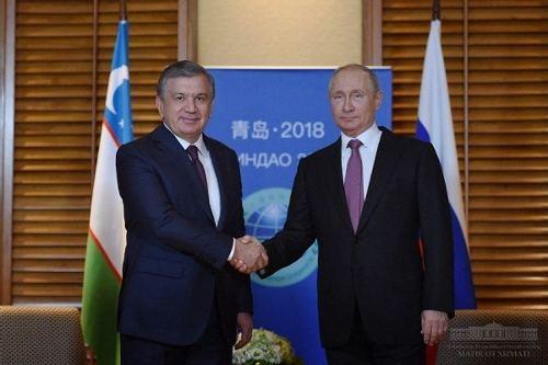 米尔齐耶耶夫:核能是与俄罗斯合作的战略方向