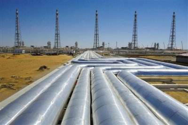 尼日利亚与摩洛哥就两国天然气管道项目下一步工作达成一致