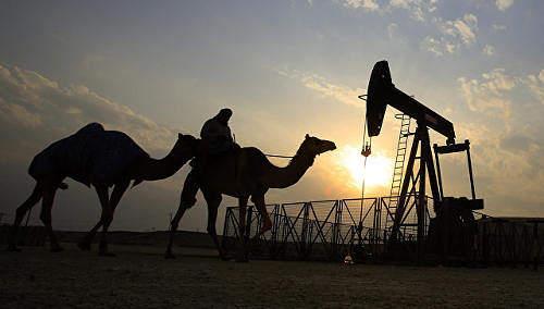 阿联酋能源部长估计世界石油市场