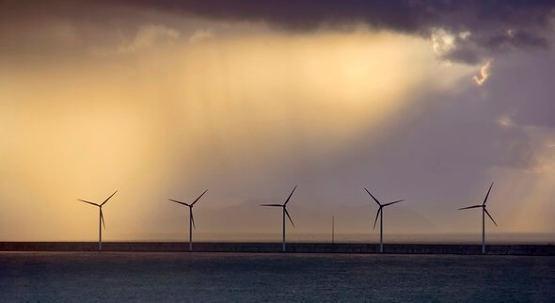 壳牌成为加入碳信托海上风力加速器的最新能源公司