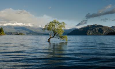23个国家签署承诺,加强气候变化行动