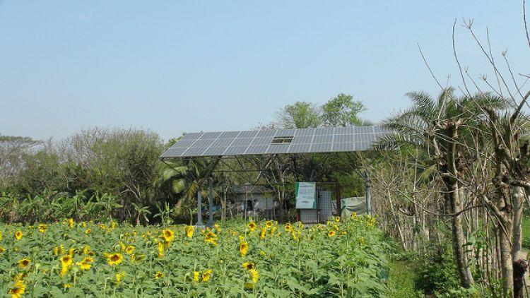 亚行为孟加拉国19MW太阳能灌溉提供4500万美元融资