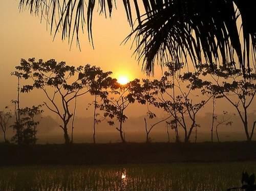 孟加拉国招标200MW太阳能光伏发电