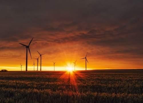 啤酒巨头圣米格尔酝酿10GW可再生能源计划