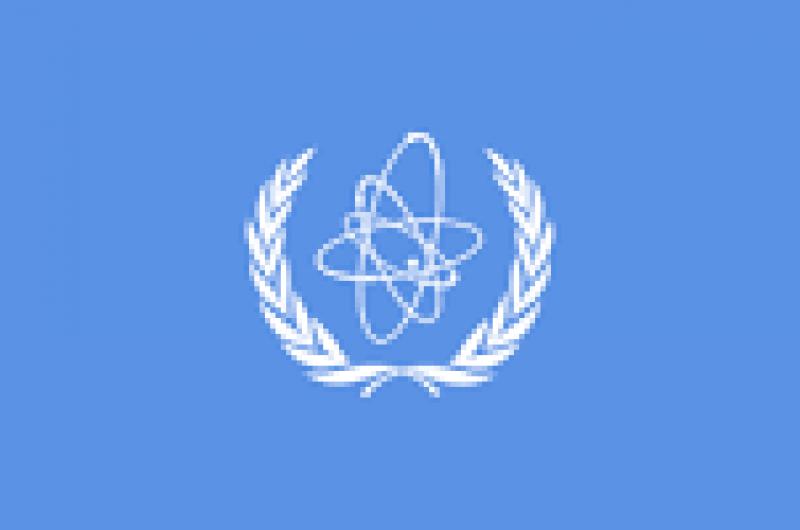 国际原子能机构评估沙特阿拉伯核能基础设施发展