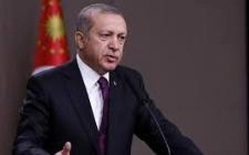 土耳其总统埃尔多安推出为期100天的能源计划