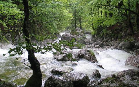 斯洛文尼亚支付6,940万欧元建设可再生能源