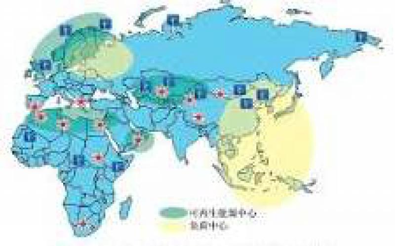 加快亚非能源互联网建设 推动清洁能源开发利用