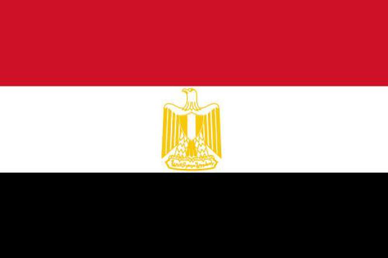 埃及能源政策框架