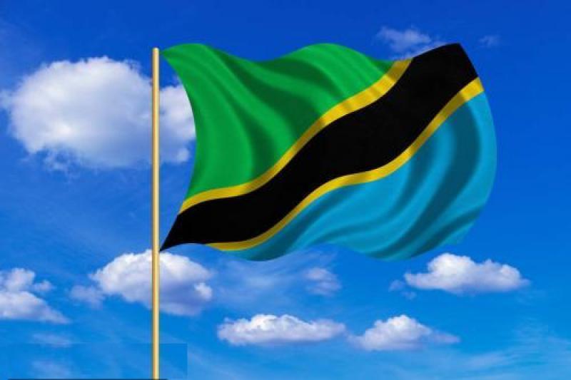 坦桑尼亚能源政策