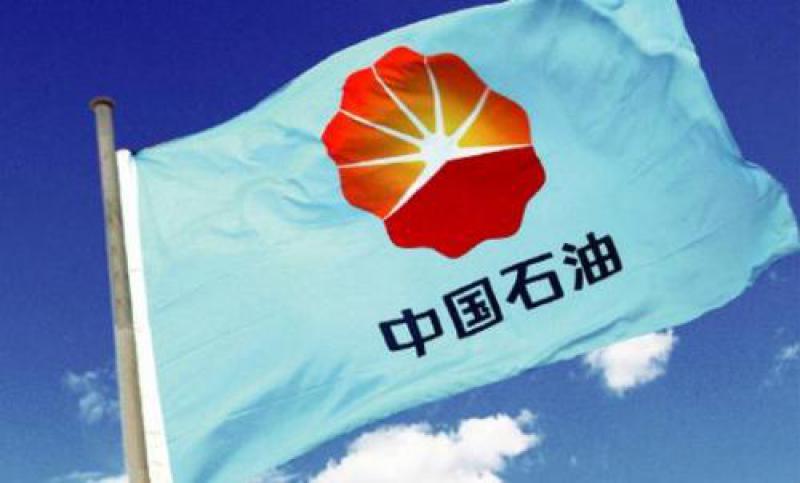 中国石油:带动非洲资源国经济社会发展