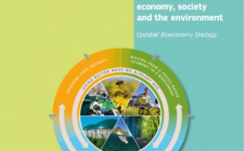 欧洲生物经济与细微差别打开了生物能源的差距