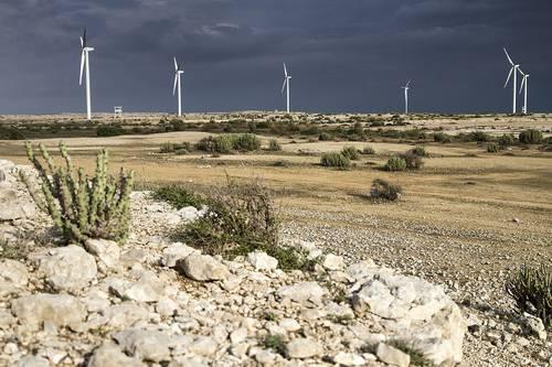 丹麦为巴基斯坦的新风能项目提供融资